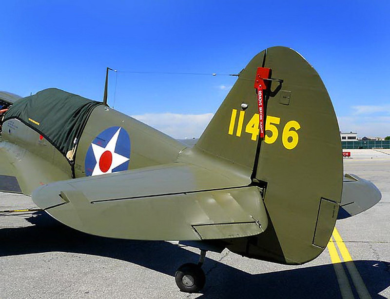 Curtiss P-40 Warhawk 22 (14)