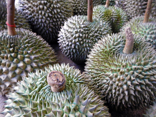 Durian For Sale in Bangkok