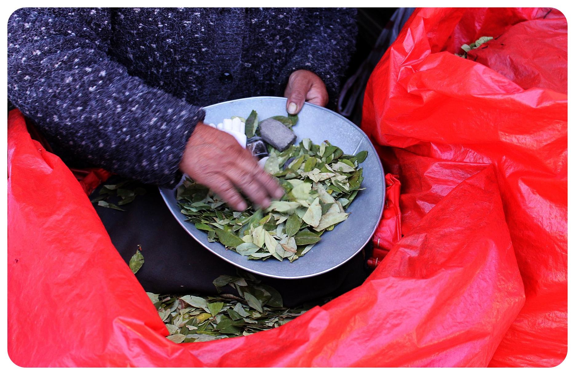 potosi coca leaves vendor