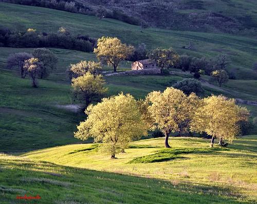 sunset italy panorama landscape countryside italia tramonto campagna tuscany toscana grosseto maremma cinigiano nikonflickraward nikond5000 jambojambo