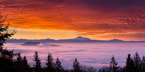 morning trees red sky mountain fog vancouver clouds forest sunrise nikon mt baker bc britishcolumbia burnaby cypress yvr d800 markdonovan d5photocom d5photo