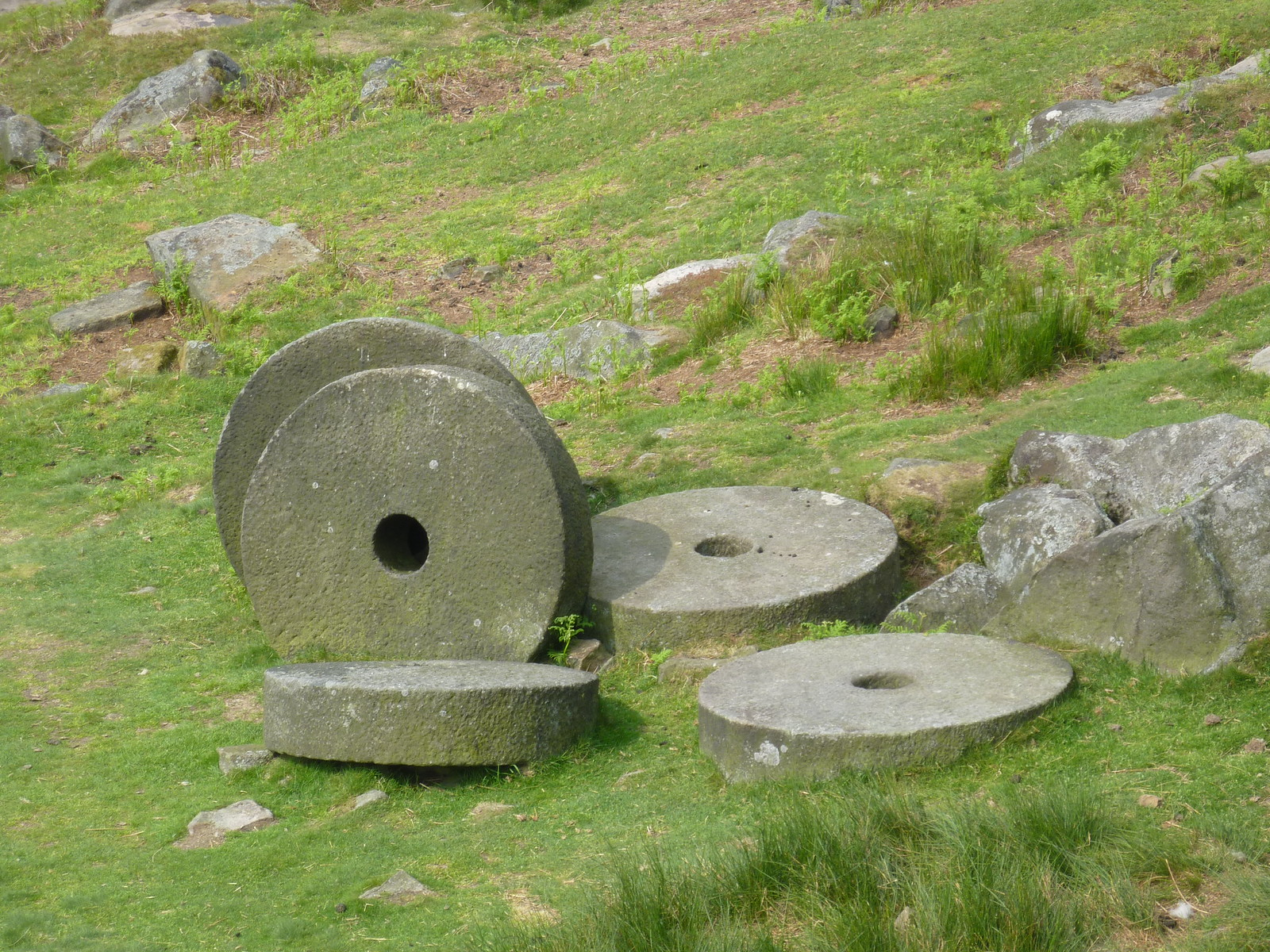 Abandoned Millstones near Cowper Stone SWC Walk 266 - Sheffield to Bamford (via Burbage Rocks and Stanage Edge) or to Moscar Lodge