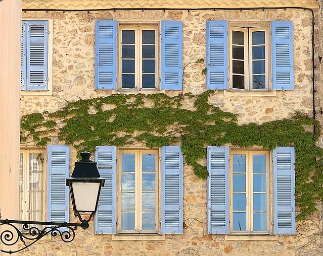 Blue shutters and vine, Carcès, Var, Provence, France