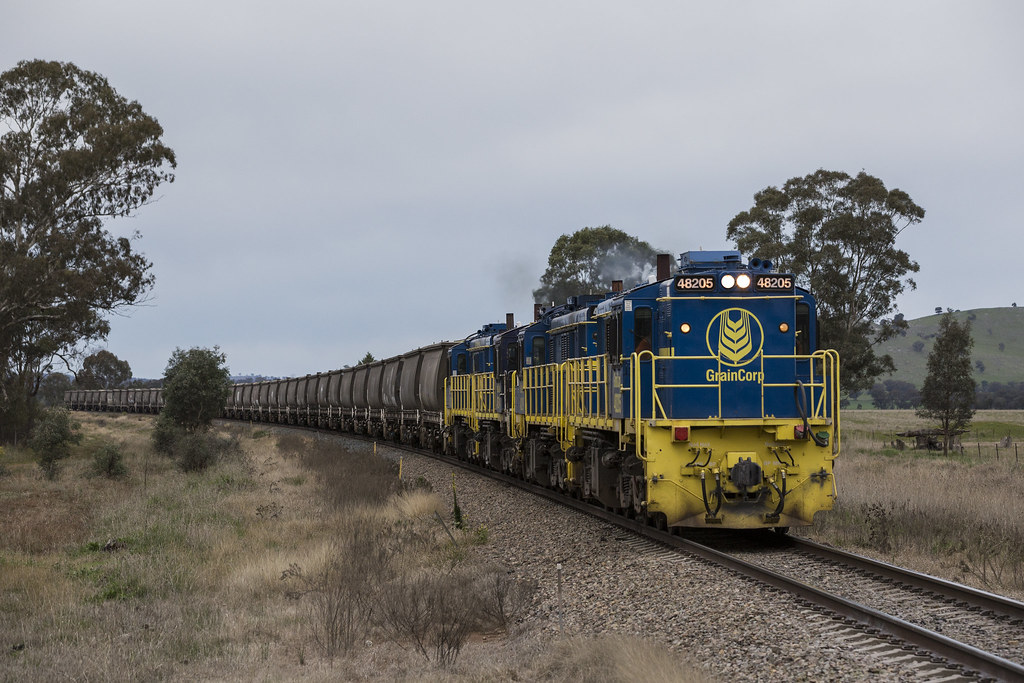 2016-07-04 Pacific National 48205-48209-48214-48212 arriving Stockinbingal 3823 by Deano_305
