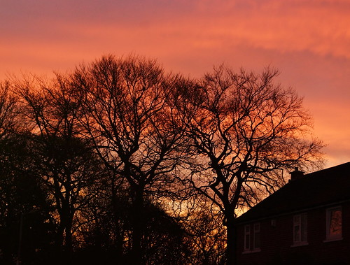 trees england sky house sunrise colours pastel sony south yorkshire alpha rotherham a77 rawmarsh