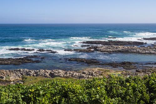 easterncape schoenmakerskop southafrica portelizabeth