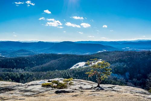 sky mountain mountains tree nature landscape unitedstates january northcarolina stonemountain blueridgemountains 2015 gladevalley stonemountainstatepark roaringgap