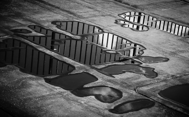 bars and puddles [Explored]