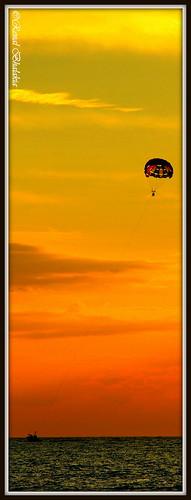 ocean sunset beach gulfofmexico water stpetersburg florida dusk parasailing parachute tradewinds pinellascounty colorfulsky nikond80 nikon18135mm tradewindsresort renalbhalakia tradewindsresorts