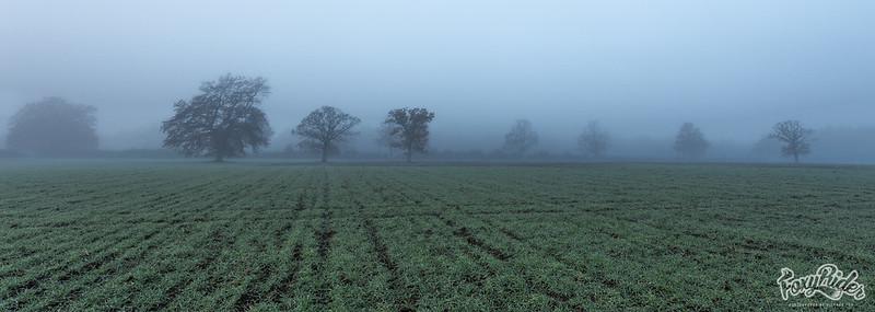 Mist - ical
