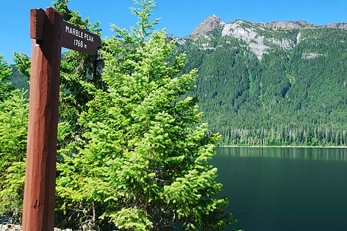Marble Peak, Strathcona Provincial Park, Central Vancouver Island, British Columbia, Canada