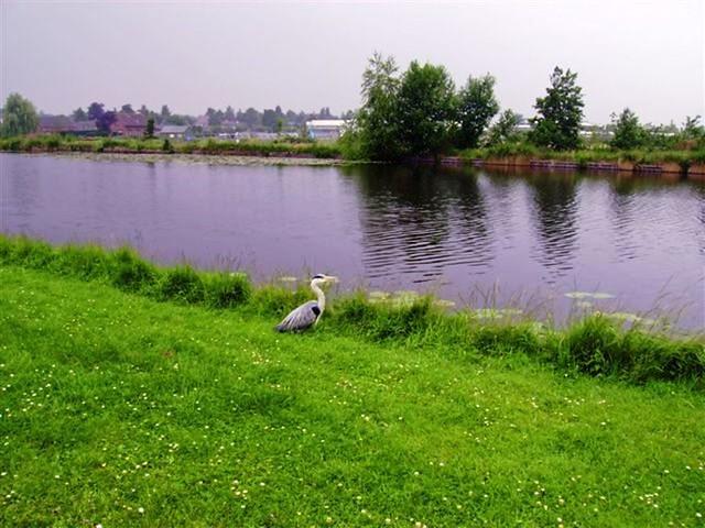 Oud Zuilen 20070609   40 km (37)