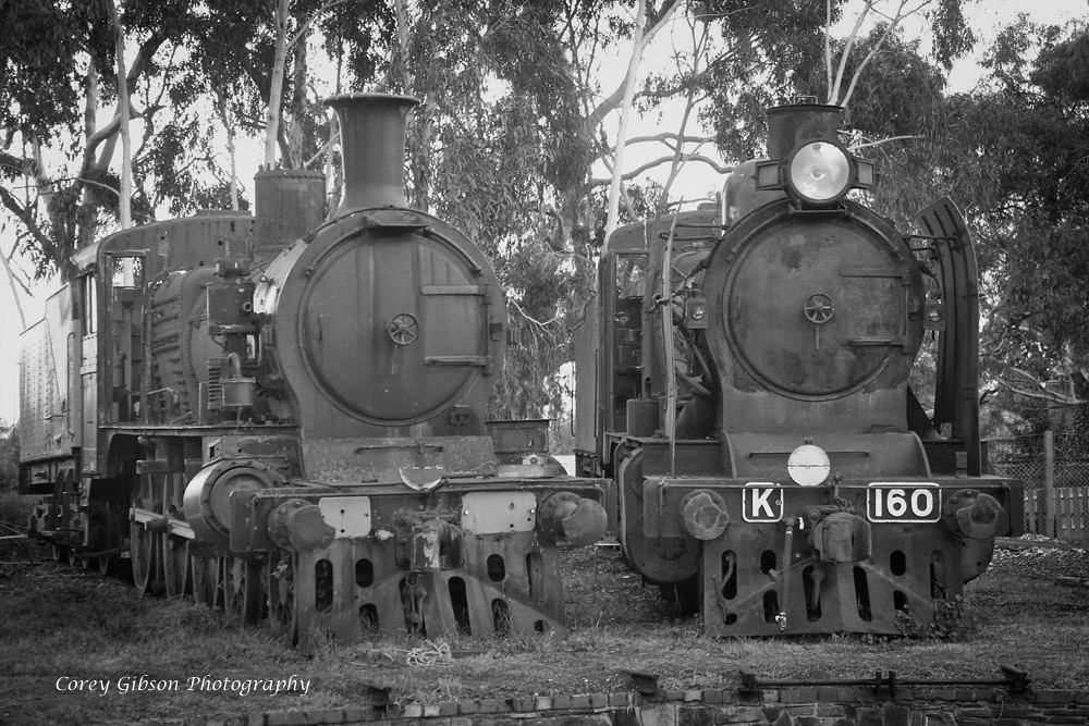 Steam Locomotives D3 619 & K160 at Maldon by Corey Gibson
