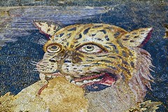 Tiger head - floor mosaic detail, House of Dionysos, Island of Delos, Greece