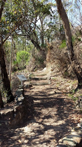 Glenbrook, Blue Mountains National Park: The Oaks Fire Trail | by ComeUndone