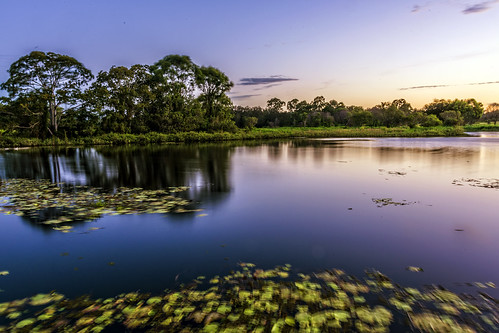 longexposure trees sky water lowlight lakes waterreflections