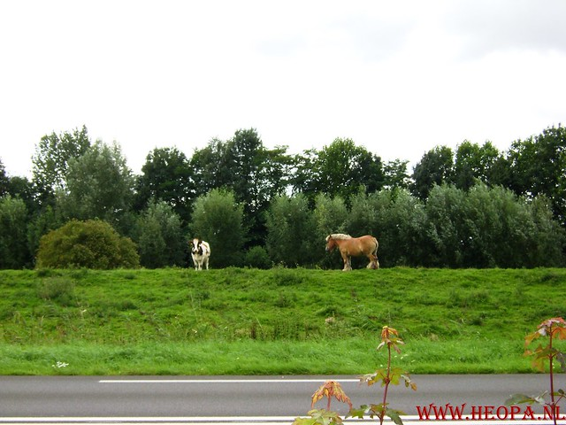 Leerdam  40 Km 23-08-2008 (56)