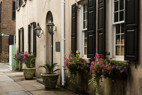 street flowers windows house building classic beautiful canon colorful view style charm charleston frenchquarter streetview flowerboxes 2016 oldtimecharm outstandingromanianphotographers