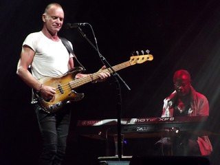 Sting | by DrabikPany