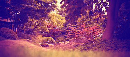 Japanese Garden | by diablopb
