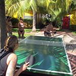 Ping Pong Showdown
