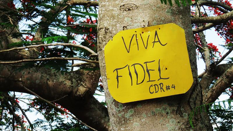 Viva Fidel