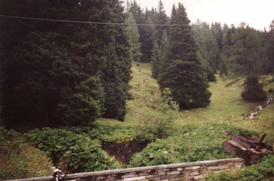 Bild 205