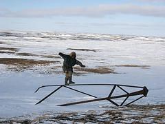 A Besacier Picard - Yamal tundra playing