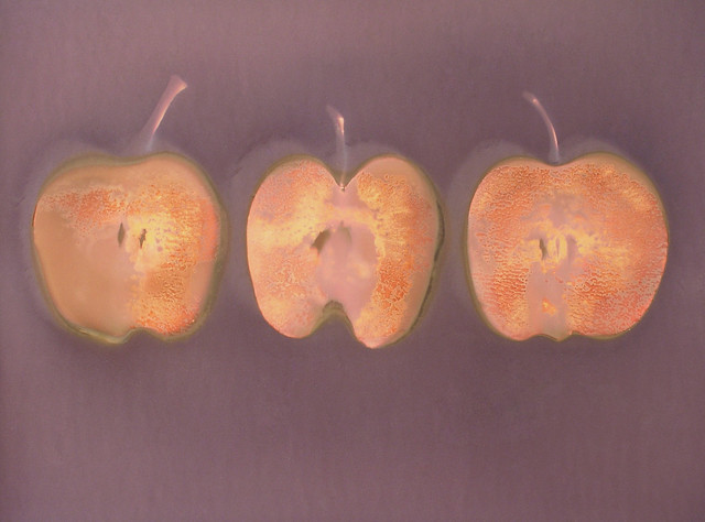 Lumen1315 Three Apples by John Fobes; copyrighted all rights reserved