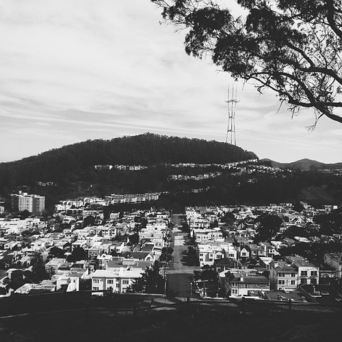 Little boxes on a hillside.... Part I of the 'grand view' from the Turtle Hill ☁ #sf #sanfrancisco #grandviewpark #turtlehill #view #sutrotower #architecture #buildings #sky #trees #city #light #chasinglight #shadows #horizon #sunsetdistrict #innersunset | by a25i