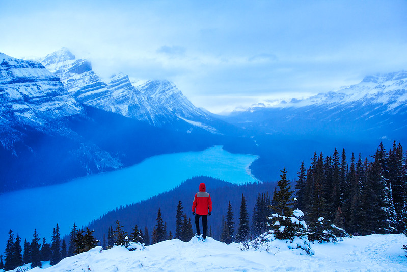 Overlooking Peyto Lake and the Mountains of Banff by Michael Matti