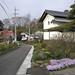 蔵と花(井子)