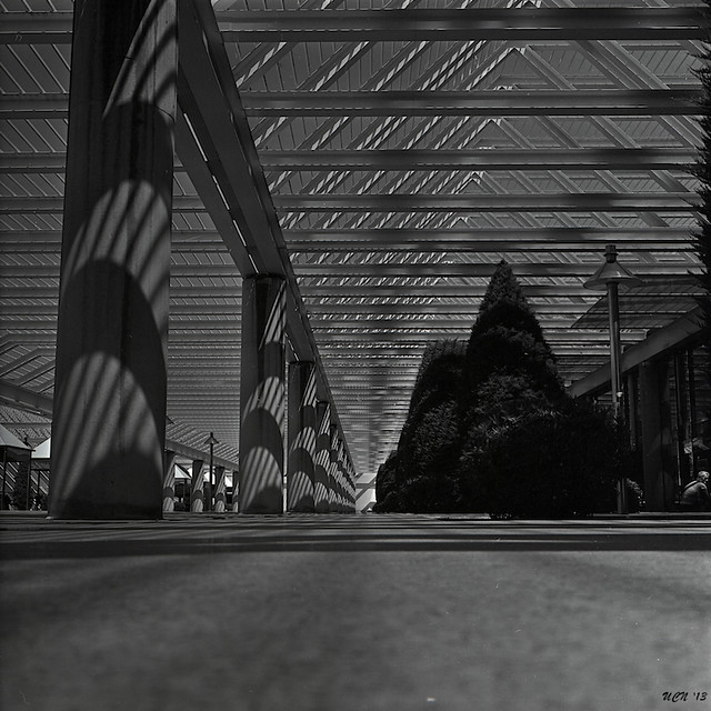 Shadow Lines #3