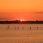 Cinnamon-stick Sunset