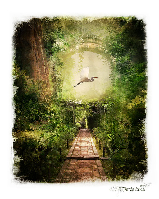* Japanese Garden *