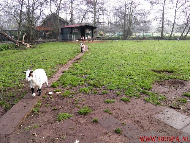 19-11-2011          Wassenaar        25.5  Km  (20)