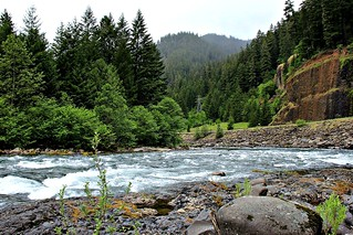 Clackamas River, Mt Hood National Forest | by Forest Service Pacific Northwest Region