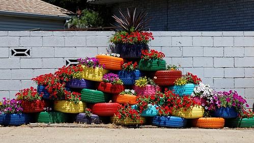 urban plants garden rainbow triangle colorful tires multicolor urbanlandscape blockwall outdooor