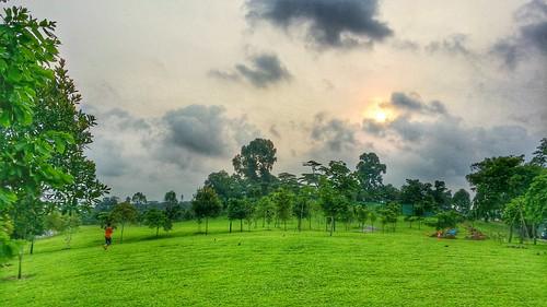 sunrise hdr morningrun woodlandswaterfront samsungnote3