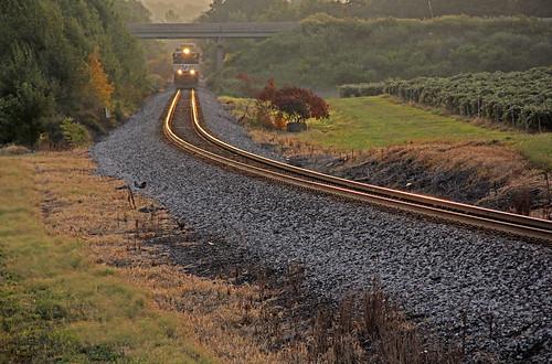 tracks railroadtracks norfolksouthern northeastpennsylvania norfolksoutherntrains intermodaltrains nsintermodaltrains bortroad
