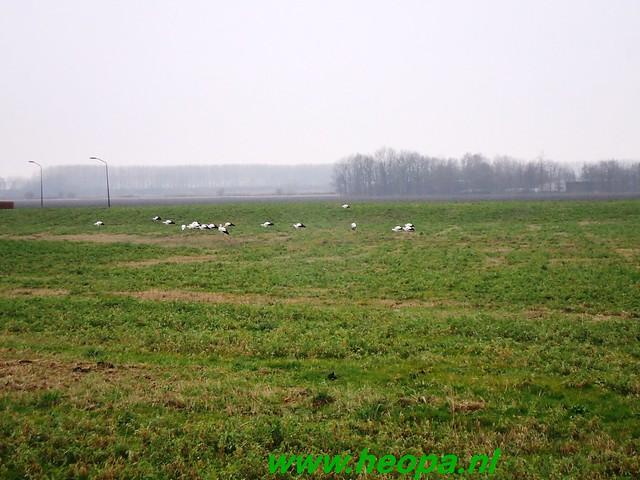 2012-12-10    Lelystad 40 Km  (40)