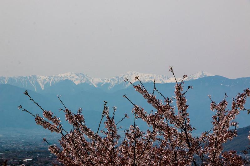20150412-甲州高尾山-0503.jpg