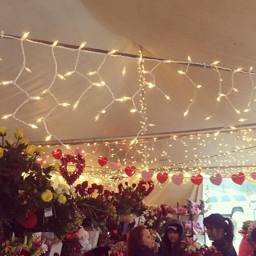 valentine valentinesday tent 2017 february14 hearts flowers