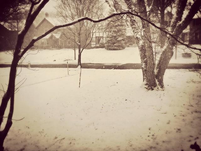 Lake effect snowing. It's wonderful.