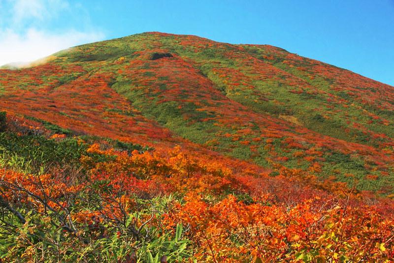 栗駒山 紅葉登山