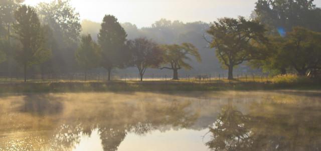 Morning Haze 2