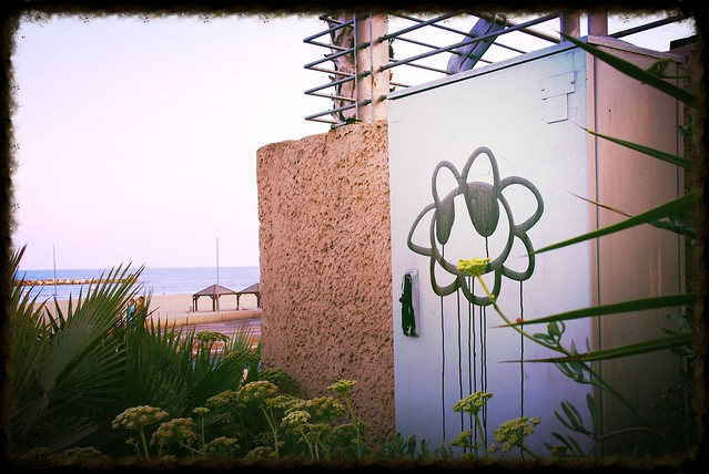 INSPIRE ONE - Beach Bloomin...