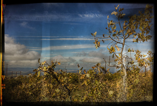 españa foto paisaje fotografia negativo mala desenfocada perdida caceres polvo montanchez rayada arañazos eduardoestellez