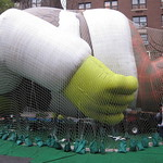 Holding Shrek to the ground