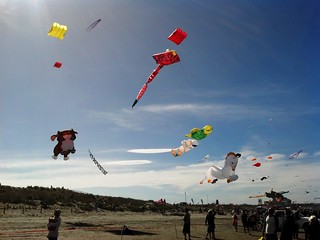 Kites | by Christchurch City Libraries